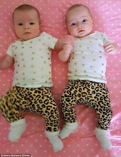 Charlotte and Olivia were given two different due dates, Dec 20 and Dec 30 2015.