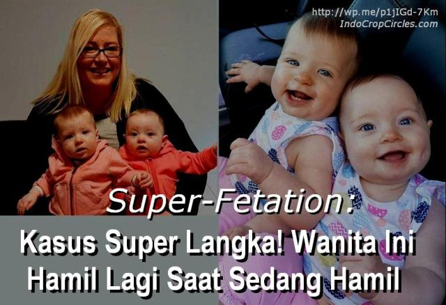 kate-hill-hamil-superfetation-banner