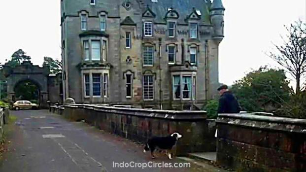 misteri-jembatan-overtoun-tempat-600-anjing-bunuh-diri-02