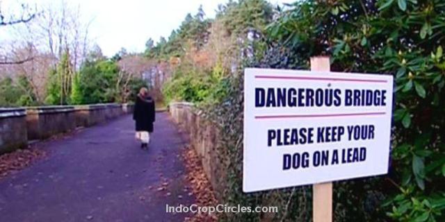misteri-jembatan-overtoun-tempat-600-anjing-bunuh-diri-header