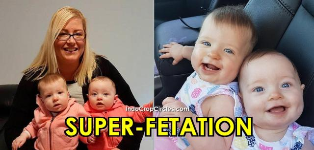 superfetation-chase-header